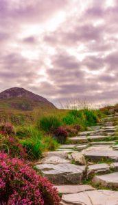 Frauenreise/ Irland